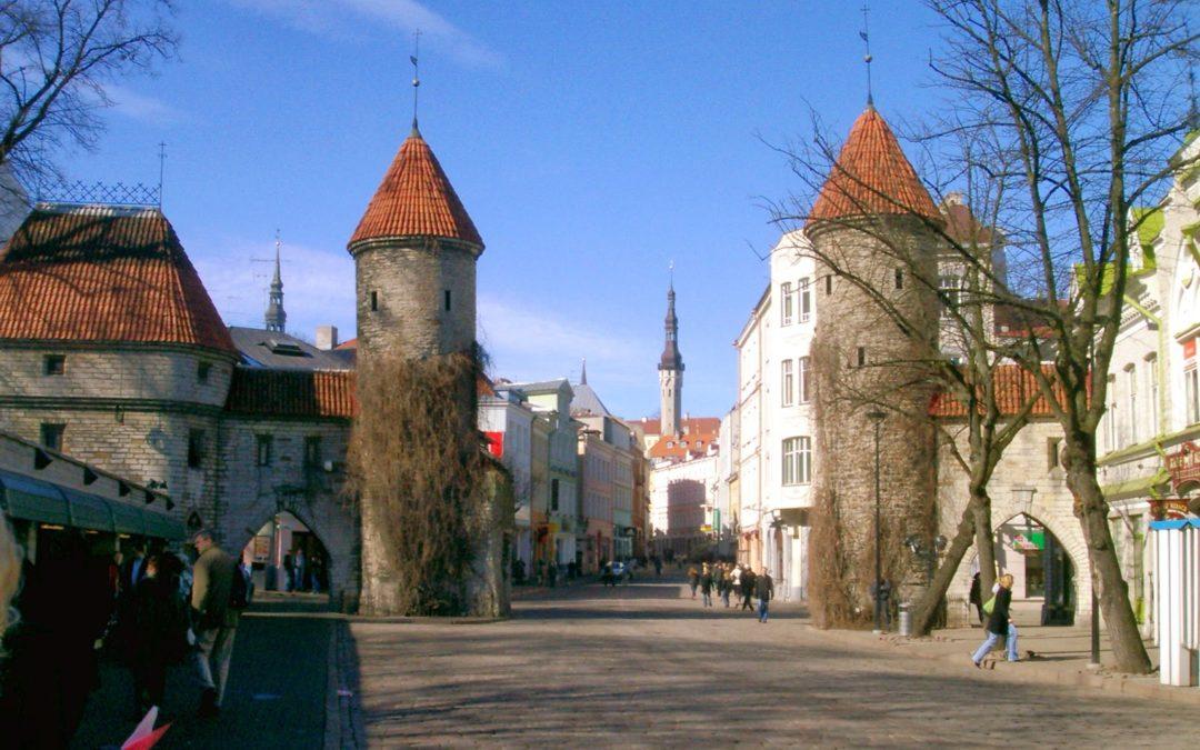 N° 182  Comment l'Estonie était prête à gérer une pandémie qui changerait tout.